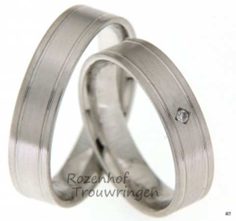 Deze mooie witgouden trouwringenhebben twee mooie subtiele lijnen door de ringen lopen en stralen rust uit!
